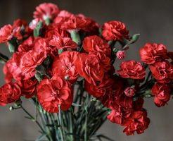 花束 母の日 色