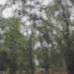 梅雨=つゆ?その名前の由来とは?