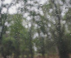 梅雨 つゆ 由来