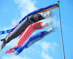 鯉のぼりロープ 太さ 長さ 素材 結び方