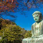 鎌倉へ梅雨に行くときのオススメスポット