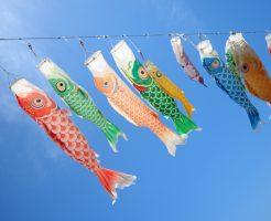 鯉のぼり 祭り 関東 関西