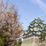 名古屋城の花見!桜まつりと屋台情報2018