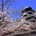 熊本城の花見!場所取りや時間、夜のライトアップは?
