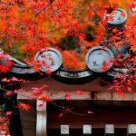 紅葉の広島の厳選穴場おすすめスポット4選!見ごろの時期は?