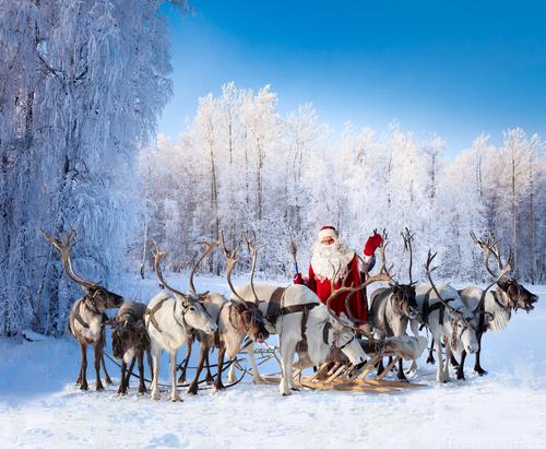 クリスマス サンタ トナカイ なぜ 数