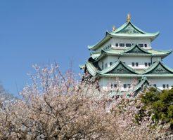 愛知県 花見 屋台 人気スポット