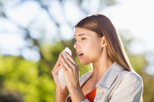 花粉症 なぜ 突然 発症 原因