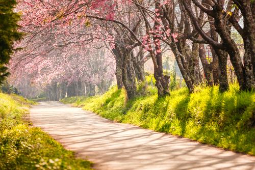 春分の日 パワースポット おすすめ