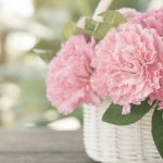 母の日にコンビニの花を贈るのってあり?コンビニの母の日がスゴイ!