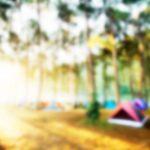 ゴールデンウィークの兵庫!おすすめのキャンプ場!